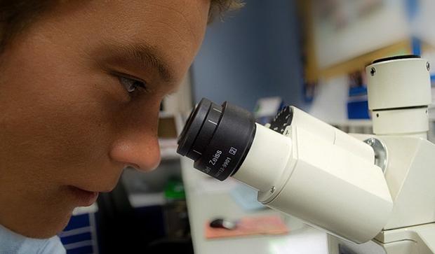 исследование кожных проб под микроскопом