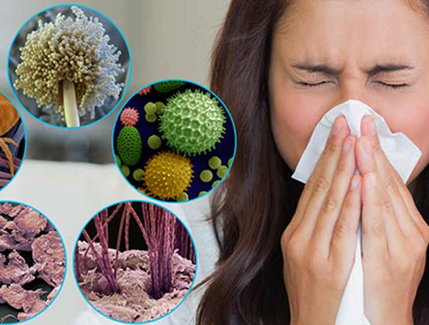 Грибки проникают в организм через вдыхаемый воздух