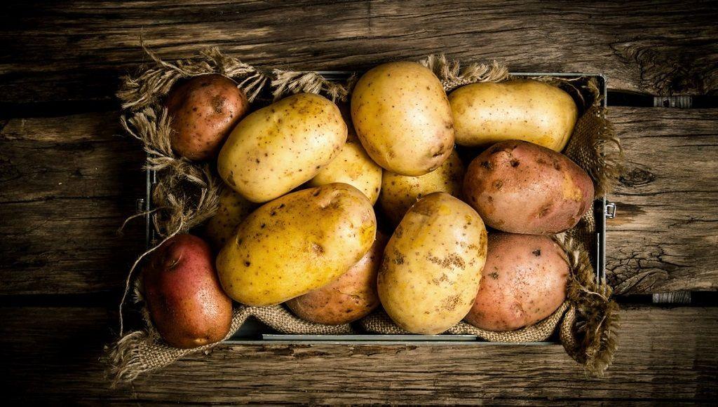 kartofel ot gribka